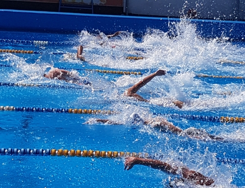 Državno prvenstvo v plavanju