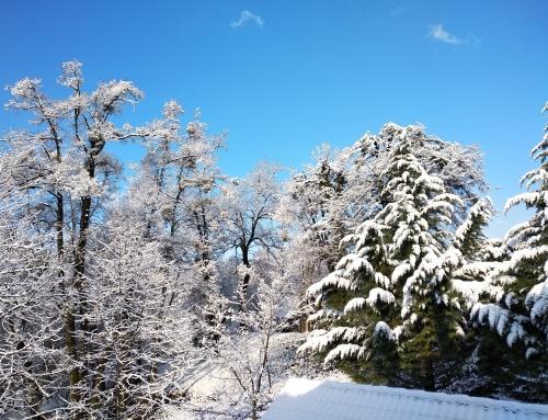 Sneg tudi konec marca